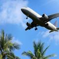 Nuovi voli da Rimini con destinazione Maiorca