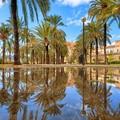 Cosa visitare a Palma di Maiorca