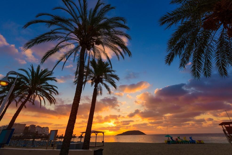 Maiorca Playa de Palmanova